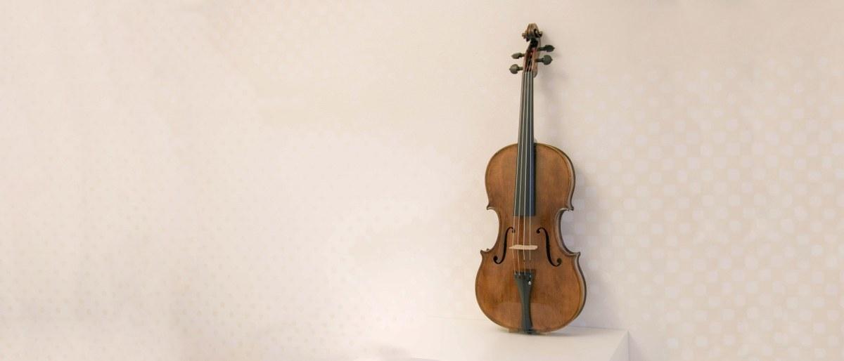 Verkauf hochwertiger Streichinstrumente & Bögen