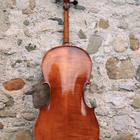 "Cello ""Homage an die Freundschaft"""